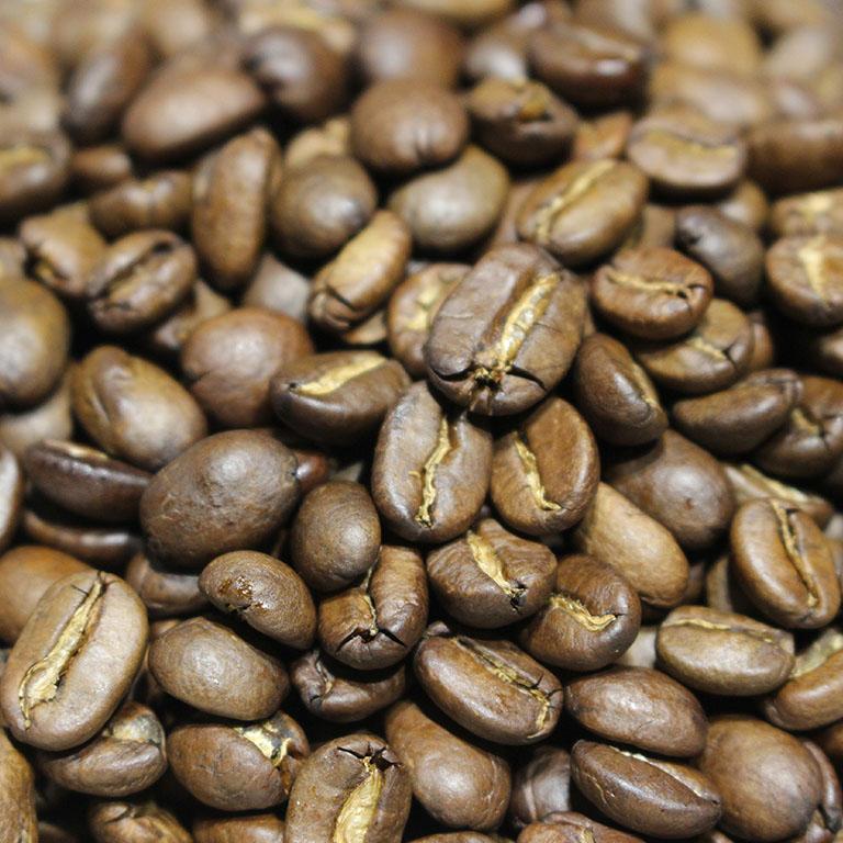コーヒー豆 トラジャ