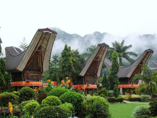 インドネシア・トラジャ産地