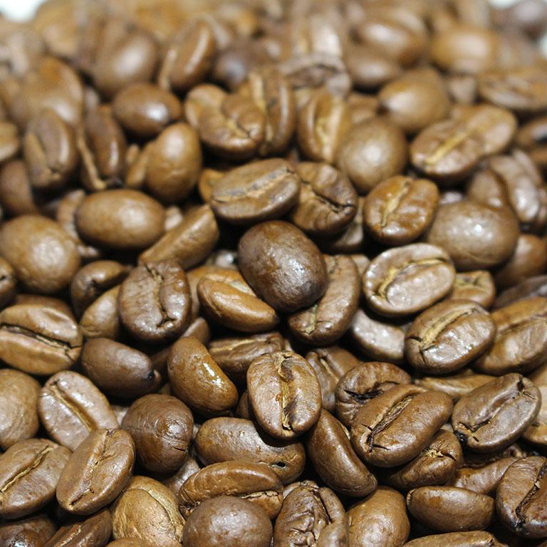 コーヒー豆 インド・モンスーン